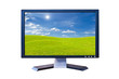 LCD Monitor with green grass meadow