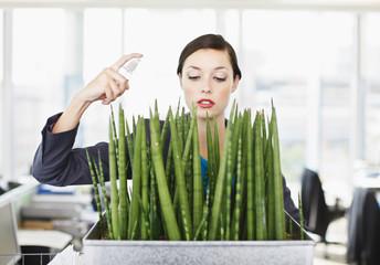 Businesswoman spraying water on flowers