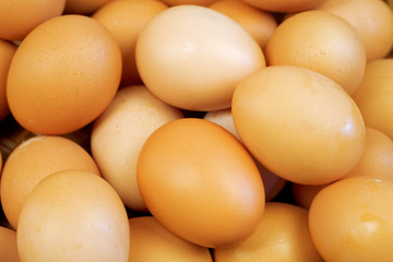 food background from a brown and yellow eggs