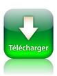"""Bouton Web """"TELECHARGER"""" (téléchargement télécharger internet)"""