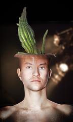 Cactus man