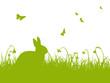 Grüne Silhouette - Hase auf einer Wiese mit Schmetterlingen