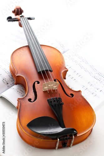 musical instrument: violin