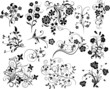 Set of floral elements for design, vector
