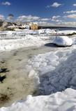 Ice age Scandinavian vertical landscape poster