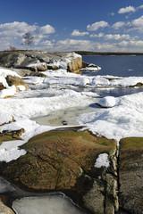 Sunny sea vertical landscape in March
