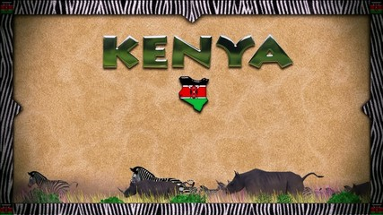 Rhinos and zebras: Kenya