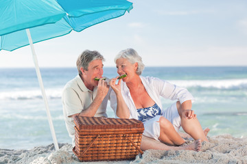 Elderly couple picniking on the beach