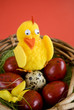Easter eggs and artificial chicken