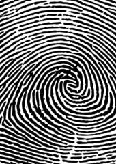Fingerabdruck vergrößert