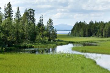 Маленькая речка, впадающая в болшое озеро.