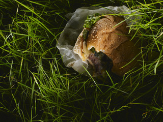 Close up of hamburger in grass