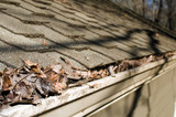 house roof gutter filled with leaves autumn poster
