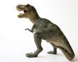 A Tyrannosaurus Rex Dinosaur with Gaping Jaws