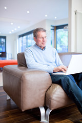 Man using laptop on couch