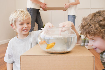 Brothers teasing fish in fish bowl in new house