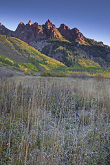 """Mountain and autumn leaves, Maroon Bells, Aspen, Colorado, United States"""