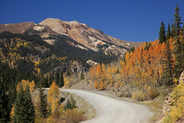 """Mountain and autumn leaves on trees on hillside, Silverton, Colorado, United States"""