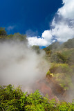 Steaming geothermal area poster