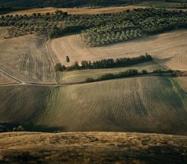 """Rolling landscape, Pienza, Tuscany, Italy"""
