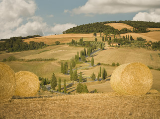 """Hay bale and rolling landscape, Tuscany, Italy"""