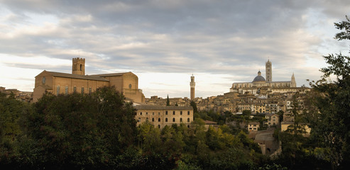 """Hilltop town, Siena, Tuscany, Italy"""