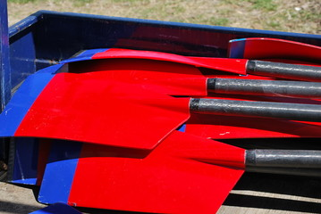 Rowing Paddles