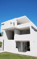 Backyard of modern house