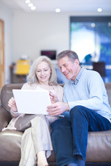 Smiling couple using laptop on couch