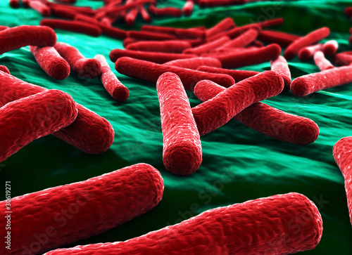 E coli Bacteria close up