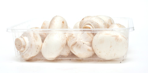 champignons in a plastic box