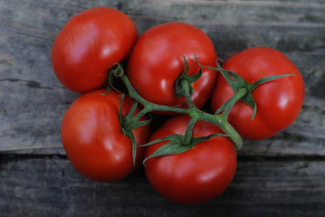 Five plump vine-ripened tomatoes