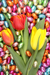 tulips on a background of chocolate candies
