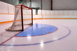 Hockey or Ringette Net and Crease in the Rink