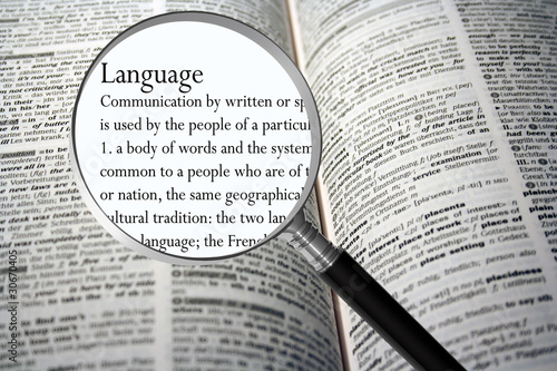Language - 30670405