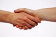 Handschlag neural