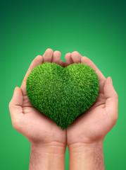 hands holding a heart symbol made of grass
