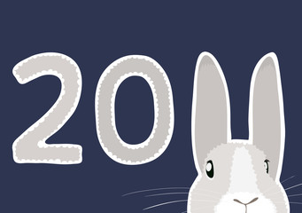 rabbit new year 2011