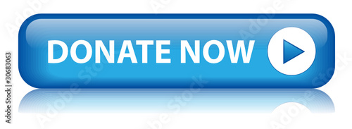 """DONATE NOW"" Web Button (donation give charity money contribute)"