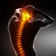 Leinwandbild Motiv Male Body Backbone Scan