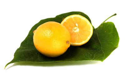 two lemons on a leaf