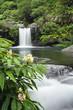 Cascade dans écrin de verdure - Ile de la Réunion