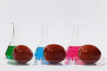 chemielabor mit tomaten