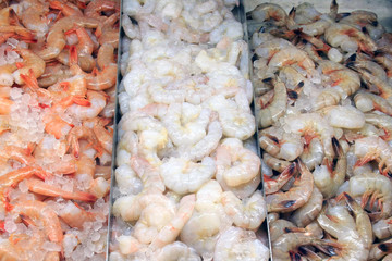 Variety of Shrimp