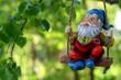 garden dwarf - 30733685