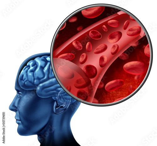 Blood cells in the brain flowing through veins