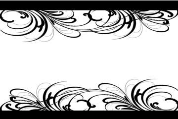 cadre floral noir