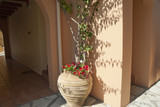Planter in Skala Kephalonia Greece
