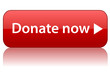 """DONATE NOW"" Web Button (charity money give contribute donation)"
