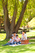 Cute family picnicking in the park